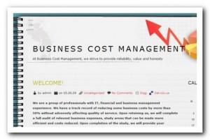 BusinessCostManagement.com